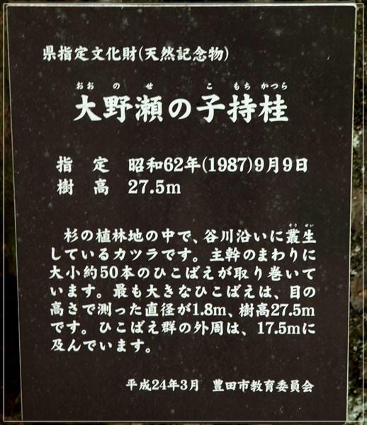 7IMG_7138.JPG